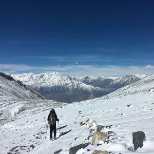 himalayangorilla_Annapurna_circuit_trek (10)