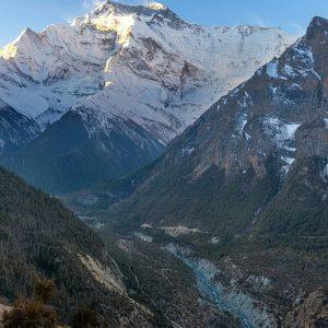 himalayangorilla_Annapurna_circuit_trek (17)